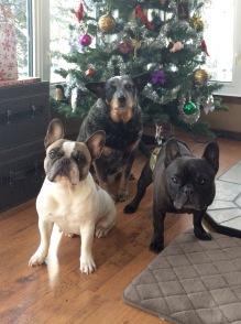 Christmas2015threestooges