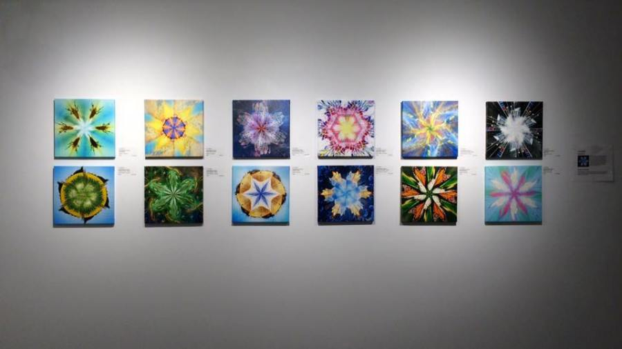 sKNOWflake Series on exhibition at Cre8ery Gallery 2016