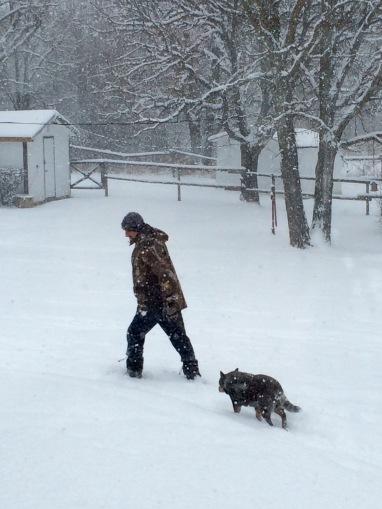 winterwalkwithMrz