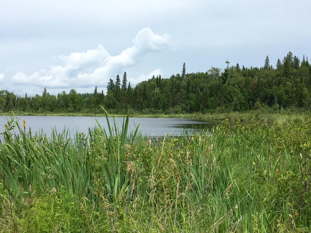 Beautiful  Falcon Lake